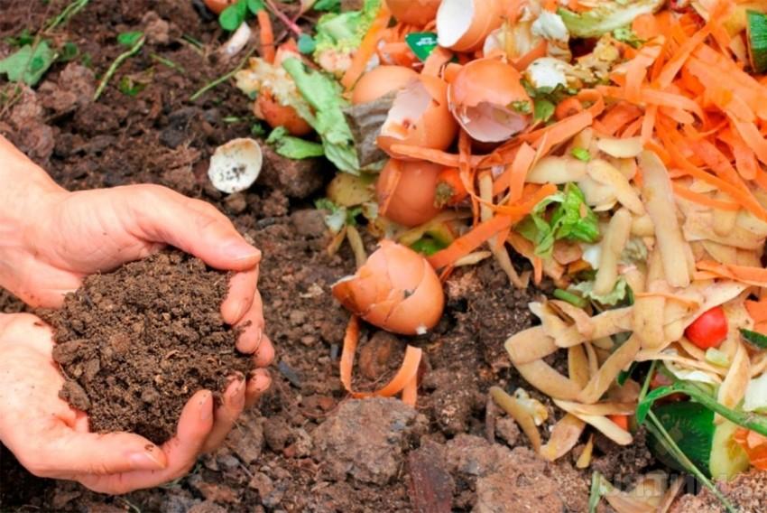 kompostnaya-yama-foto-primery-kak-sdelat-svoimi-rukami