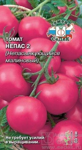 novye-sorta-pomidor-tomaty-dlya-tepliczy-i-otkrytogo-grunta-10