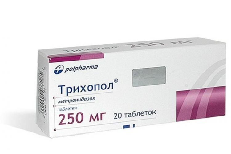 bolezni-i-vrediteli-ogurtsov-v-teplitse-i-otkrytom-grunte-prichiny-i-lechenie-19