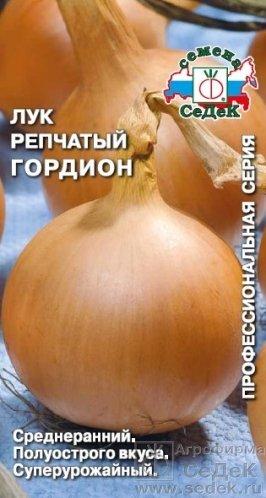 luchshie-novye-sorta-i-gibridy-repchatogo-luka-010