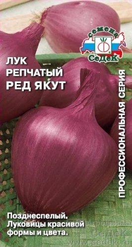 luchshie-novye-sorta-i-gibridy-repchatogo-luka-20