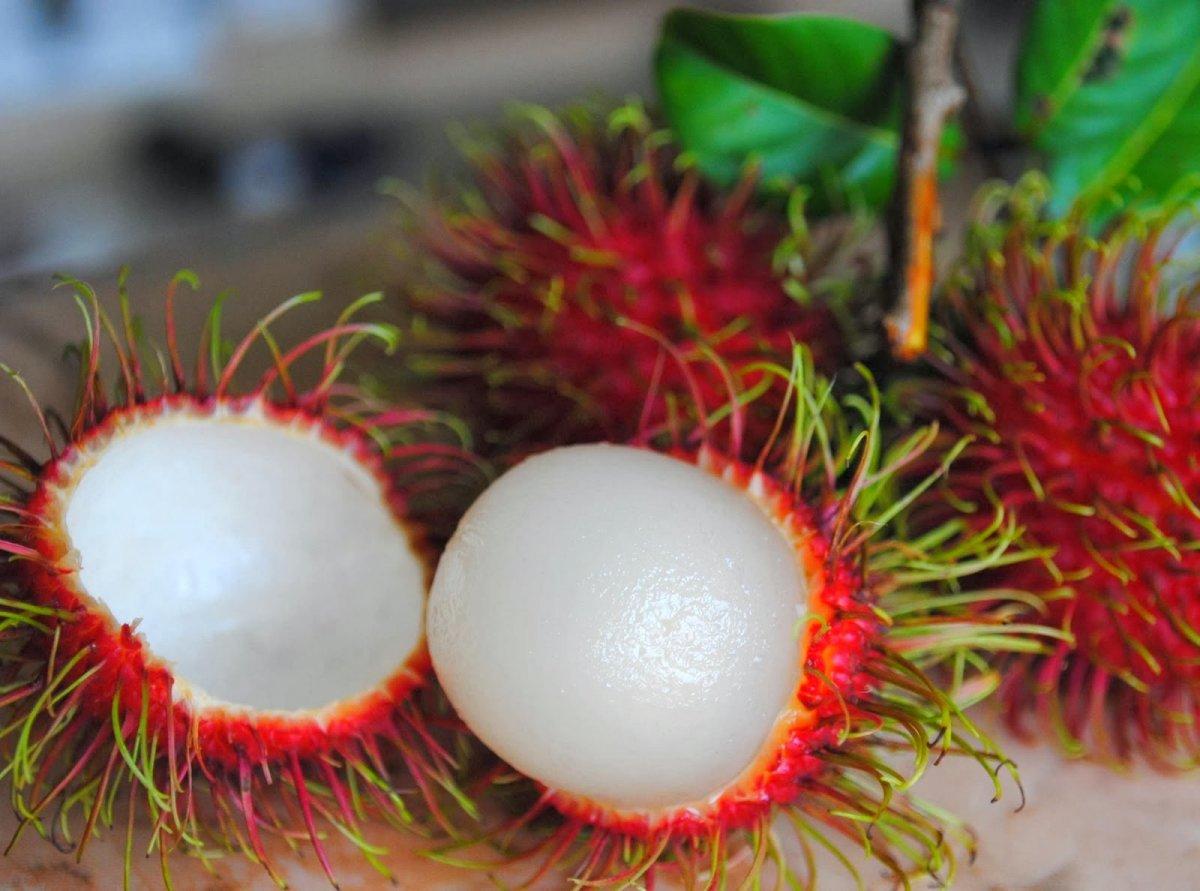 tropicheskie-frukty-foto-nazvanie-opisanie-9