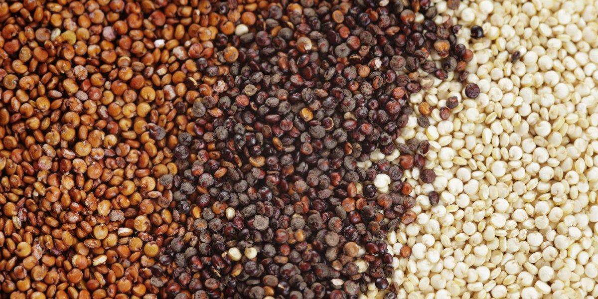 tropicheskie-plody-rastenij-kotorye-my-edim-foto-opisanie-23