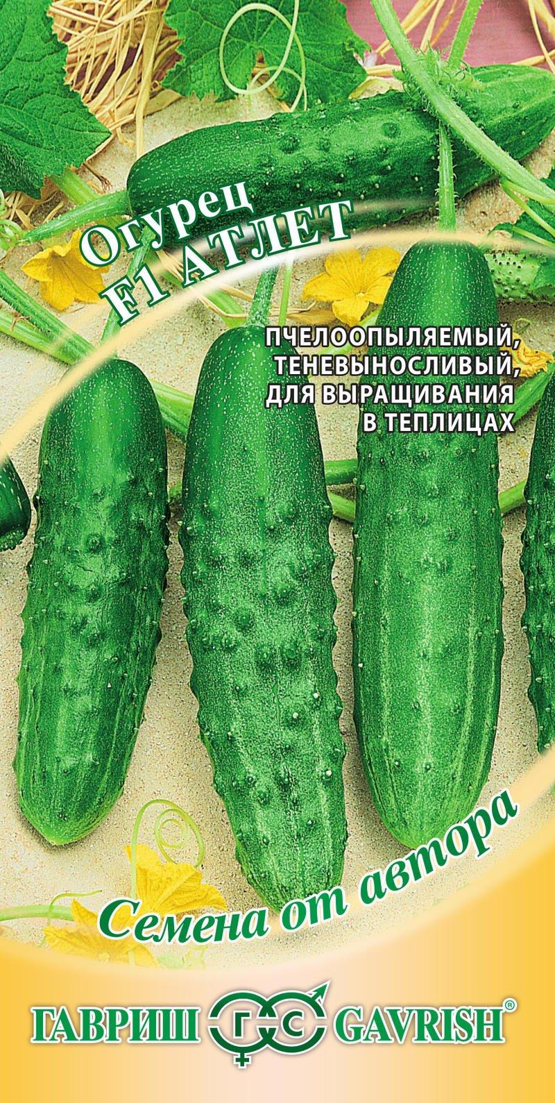 sorta-ogurczov-dlya-tepliczy-opisanie-harakteristiki-3