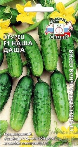 sorta-ogurczov-dlya-tepliczy-opisanie-harakteristiki-7