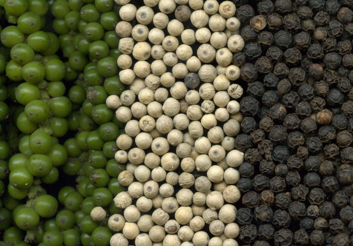 tropicheskie-plody-rastenij-kotorye-my-edim-foto-opisanie-21