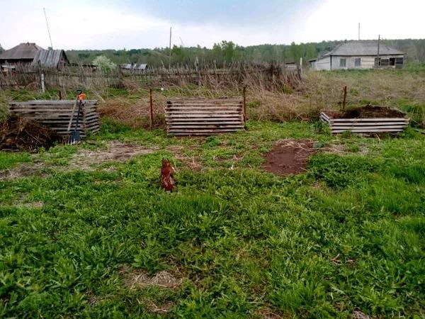 kak-vyrastit-kartoshku-foto-video-kak-sazhat-i-uhazhivat-za-kartofelem-25
