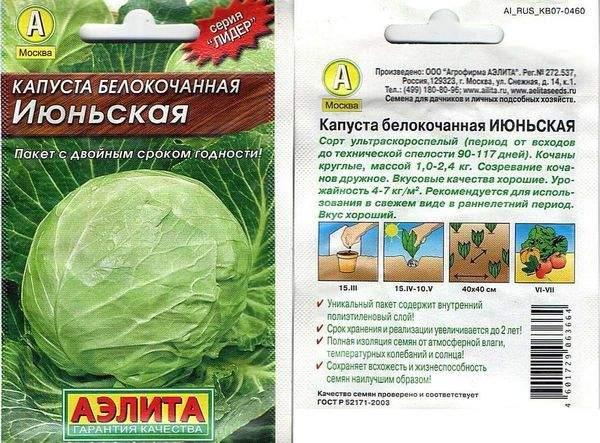 vyrashhivanie-kapusty-na-semena-kak-vybrat-i-vyrastit-semena-rannej-kapusty-3